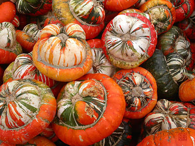 Photograph - Turban Squash by Geoffrey Lewis