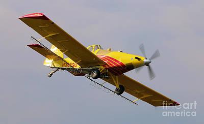 Photograph - Turbo Thrush 4 by Rick Lipscomb