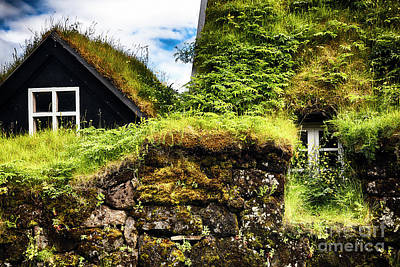 Sk Stones Photograph - Turf House With Flowers by George Oze