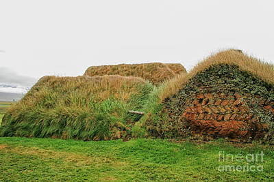 Photograph - Turf Houses In Iceland by Patricia Hofmeester