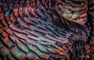 Photograph - Turkey Abstract by Rikk Flohr