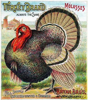 Photograph - Turkey Brand Molasses.  by Granger