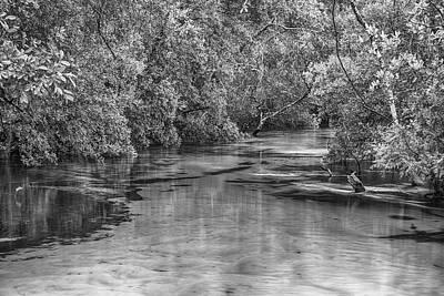 Turkey Creek In Black And White Art Print