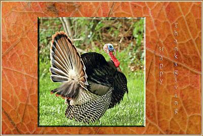 Barnyard Digital Art - Turkey Strut by Geraldine Scull