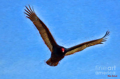 Photograph - Turkey Vulture Away by Blake Richards