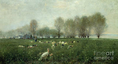 Wild Turkey Painting - Turkeys In The Countryside At Sunset by Alceste Campriani