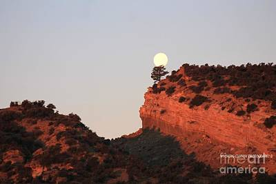 Photograph - Turk's Moon by Carole Martinez
