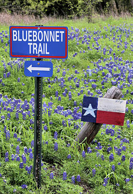 Photograph - Turn Here For The The Bluebonnet Trail In Ennis Texas by JC Findley