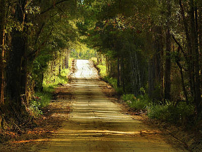 Georgia Red Clay Photograph - Turn Right Here by Laura Ragland
