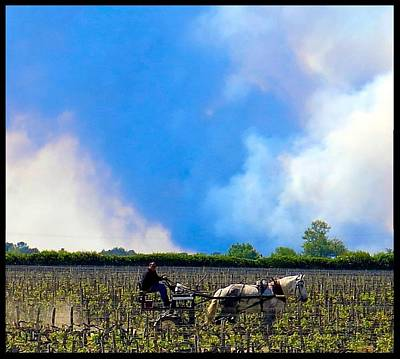 Photograph - Turning The Soil At Chateau Pontet Canet by Betty Buller Whitehead