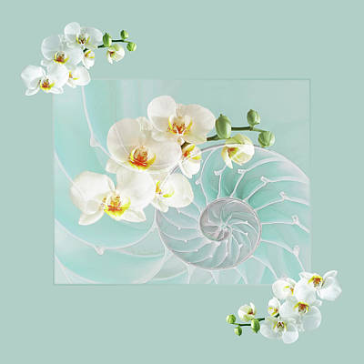 White Orchids Photograph - Turquoise Fusion by Gill Billington
