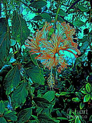 Photograph -  Turquoise Garden by Nancy Kane Chapman