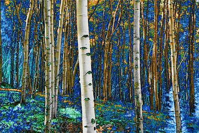 Photograph - Turquoise Gold Aspens by Lanita Williams