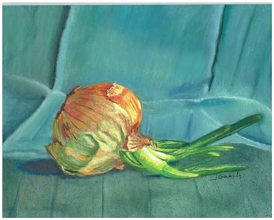 Wall Art - Pastel - Turquoise Onion by Laura Gabel
