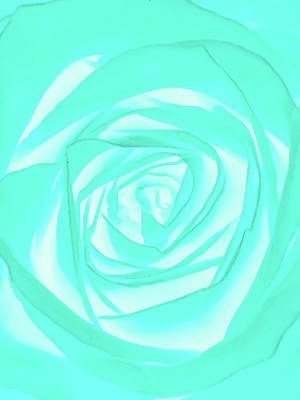 Abstract Flower Photograph - Turquoise Rose by Heather Joyce Morrill