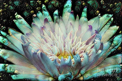 Lily Digital Art - Turquoise Waterlilies 5 by Amy Cicconi