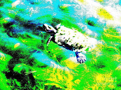 Digital Art - Turtle Abstract by Ed Weidman