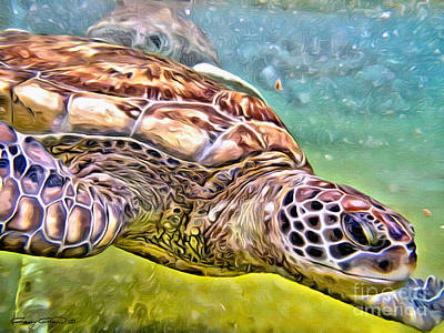 Reptiles Royalty-Free and Rights-Managed Images - Turtle dive by Carey Chen