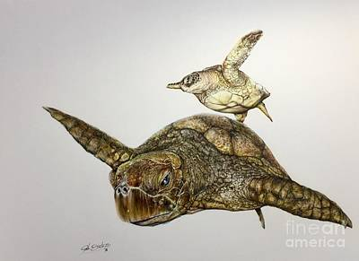 Painting - Turtle Iv by Pete Sintes