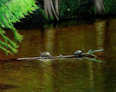 Turtle Log Spa Print by Doug Strickland