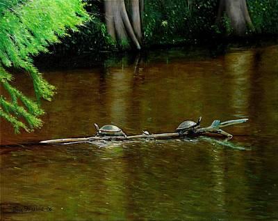 Turtle Log Spa Print by Doug Strickland