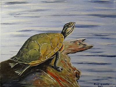 Slider Painting - Turtle On A Log by Richard Goohs