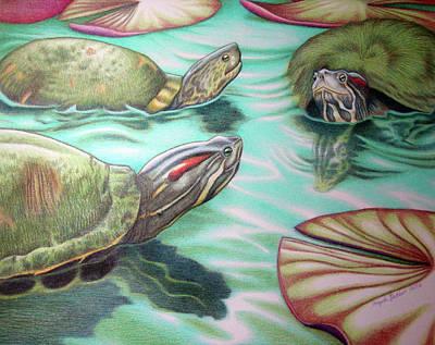 Slider Drawing - Turtle Poker by Angela De Riso