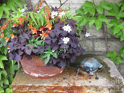 Photograph - Turtle Sculpture by Kathie Chicoine