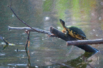 Digital Art - Turtle Stump Sunning by Dale Powell