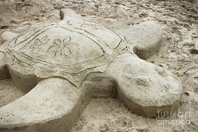 Photograph - Turtle Time Sand Sculpture by Colleen Kammerer