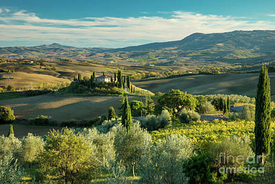 Photograph - Tuscan Afternoon by Brian Jannsen