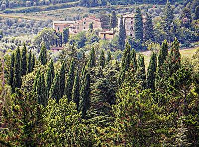 Photograph - Tuscan Countryside Near Cetona by Dorothy Berry-Lound