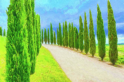 Digital Art - Tuscan Cypress by Dennis Cox WorldViews
