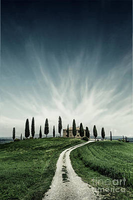 Photograph - Tuscan Dream by Evelina Kremsdorf