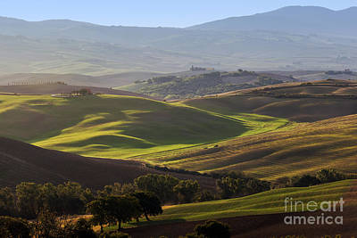 Agricultural Photograph - Tuscan Farm House, Vineyard, Green Hills by Michal Bednarek