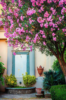 Photograph - Tuscan Garden by Andrew Soundarajan