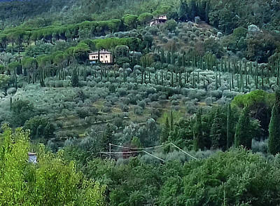 Photograph - Tuscan Hills by Dorothy Berry-Lound