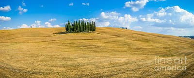 Photograph - Tuscan Nature Myths by JR Photography