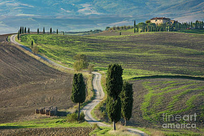 Photograph - Tuscan Road IIi by Brian Jannsen