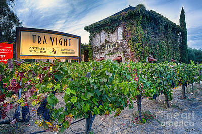 Tuscan Style Building In A Vineyard Art Print by George Oze