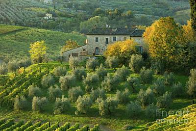 Photograph - Tuscan Villa by Brian Jannsen