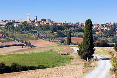 Vineyard Photograph - Tuscany Landscape With Pienza Town On The Hill, Italy by Michal Bednarek
