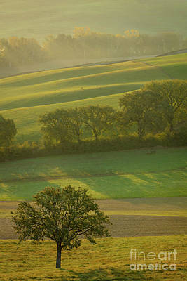 Photograph - Tuscany Misty Morning by Brian Jannsen