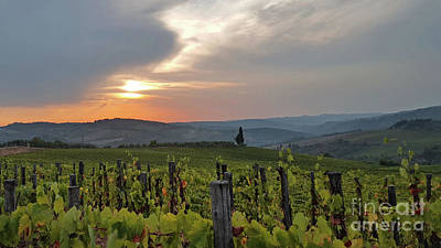 Photograph - Tuscany Sunset by Loriannah Hespe