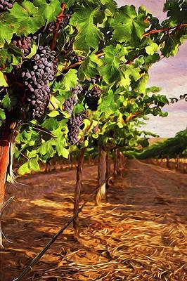 Painting - Tuscany Vineyards - 03 by Andrea Mazzocchetti