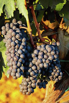 Painting - Tuscany Vineyards - 05 by Andrea Mazzocchetti
