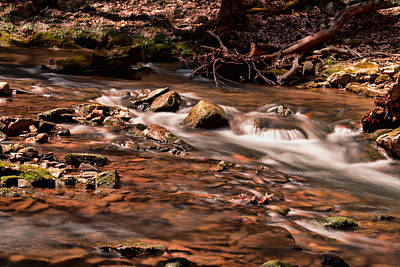 Photograph - Tuscarora Mountain Stream by Kristia Adams