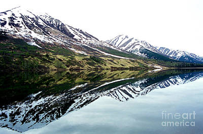 Photograph - Tutshi Lake by Frank Townsley