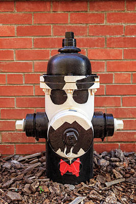 Tuxedo Hydrant Art Print by James Eddy