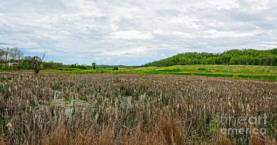 Photograph - Tva Wetlands by Paul Mashburn
